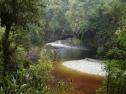 Oparara River, Karamea