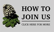 Join The Canterbury Botanical Society
