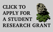 Apply For A Canterbury Botanical Society Student Grant